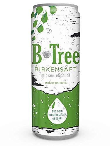B-TREE Birkensaft mit Minzgeschmack EINWEG 12x250 ml