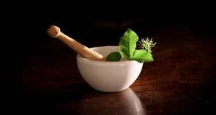Ashwagandha ist ein Naturheilmittel mit vielfach positiven Gesundheitseffekten