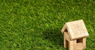 Rasen: Entfernen und neu anlegen leicht gemacht