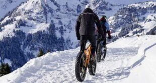 Auf der Suche nach einem neuen Fahrrad